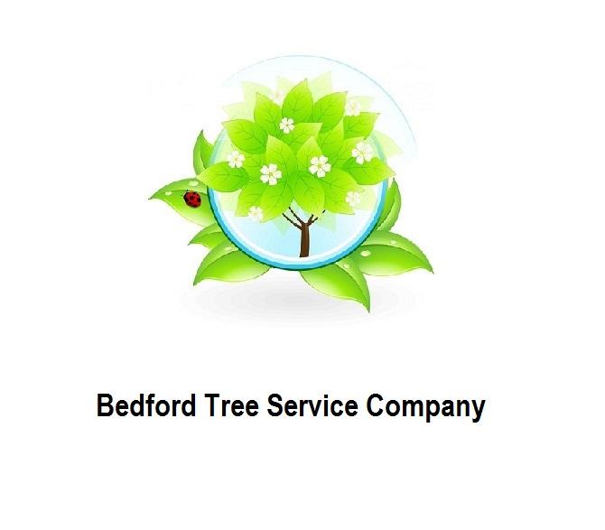 Bedford Tree Service Company.jpg