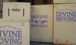 Divine Moving and Storage NYC _650.jpg