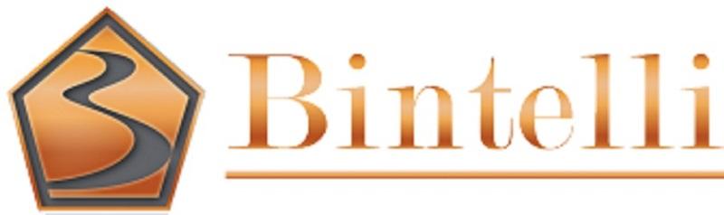 bintelli-logo336x100-1.jpg